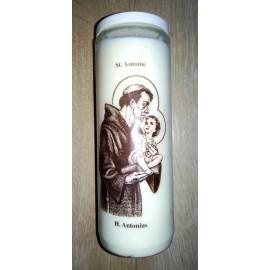 Saint Antoine de Padoue - neuvaine